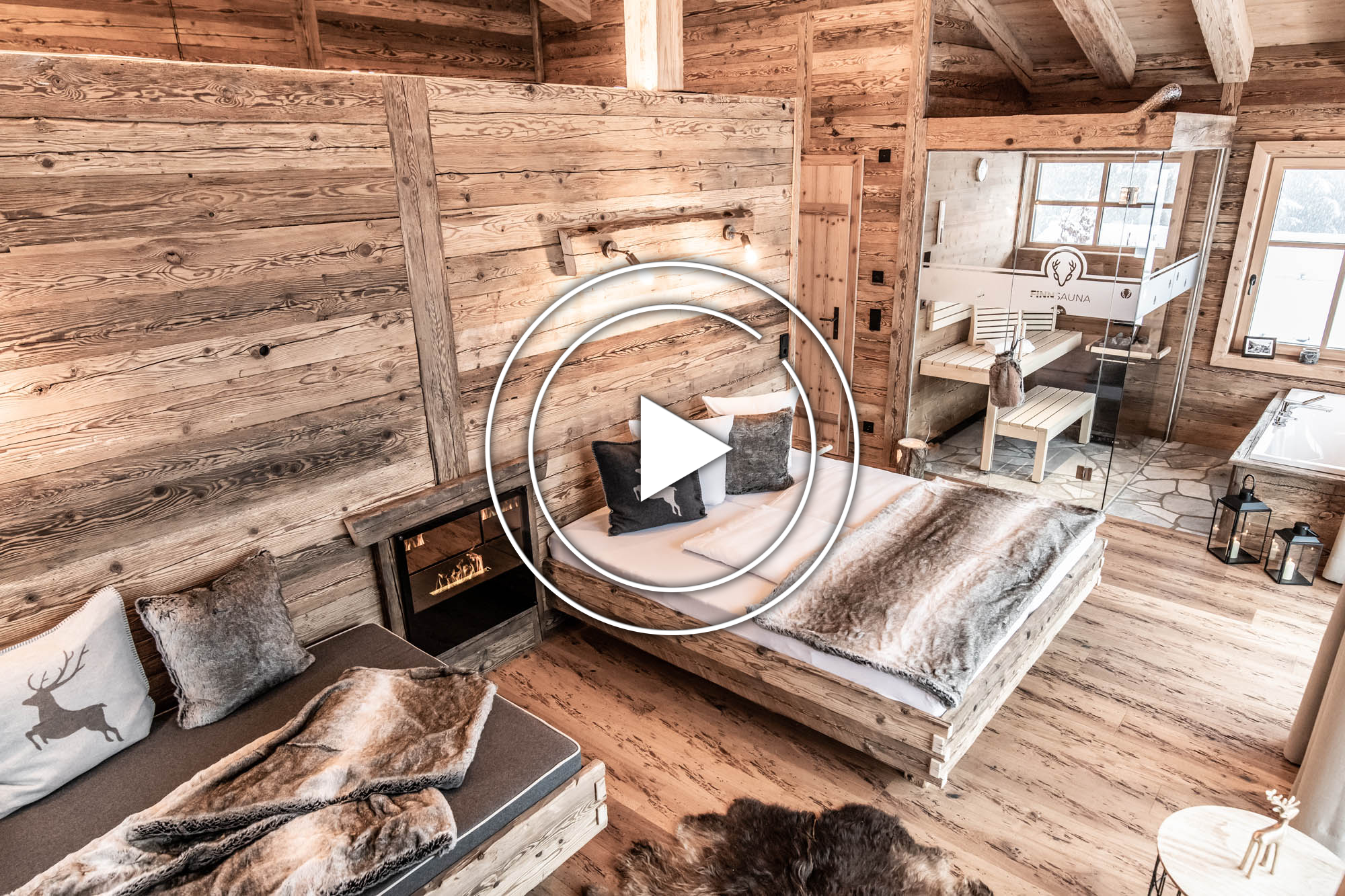 video_benglerwald_winter_pic